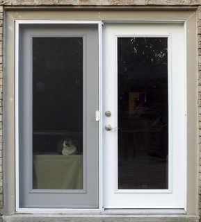 Metal doors 0011