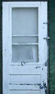 Wood doors 0020