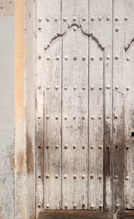Wood doors 0041