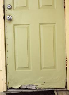Wood doors 0058