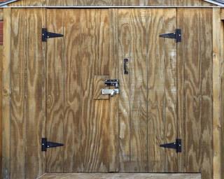 Wood doors 0062
