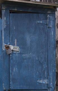 Wood doors 0067