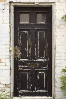 Wood doors 0070