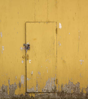 Wood doors 0072