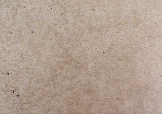 Carpet 0011