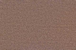 Carpet 0013