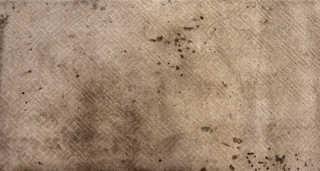 Carpet 0019
