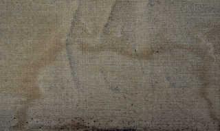 Carpet 0024