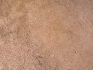 Carpet 0025