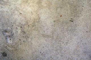 Carpet 0026