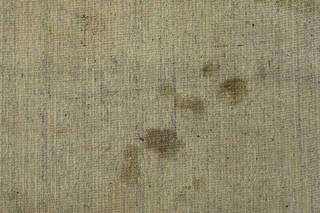 Carpet 0032