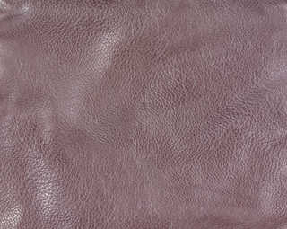 Leather 0011