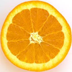 Fruits Category