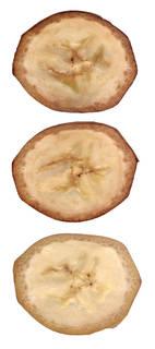 Fruits 0007