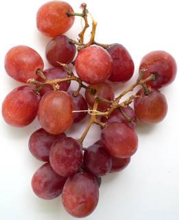 Fruits 0015