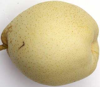 Fruits 0020