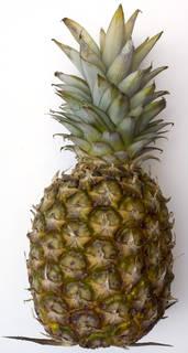 Fruits 0022