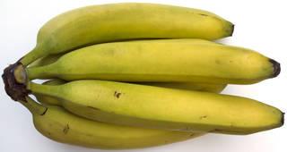 Fruits 0023