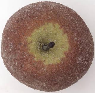 Fruits 0027