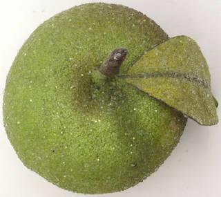Fruits 0029
