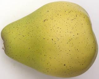Fruits 0031