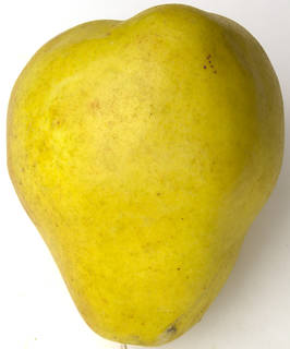 Fruits 0034