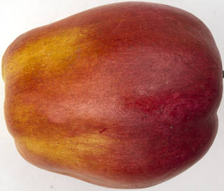 Fruits 0036