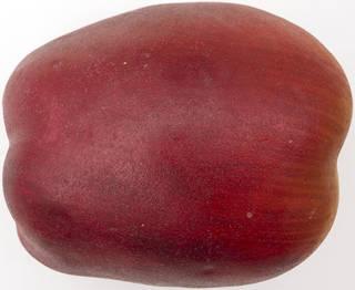 Fruits 0037