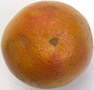 Fruits 0041