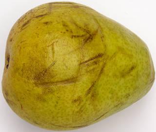 Fruits 0053