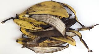 Fruits 0055