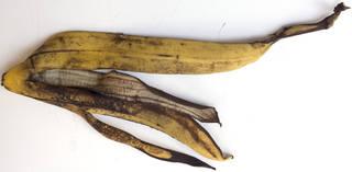 Fruits 0056