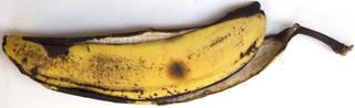 Fruits 0057