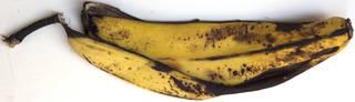 fruits_0057 texture
