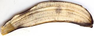 Fruits 0058