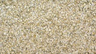 Grains and seeds 0003