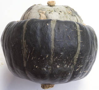 vegetables_0056 texture
