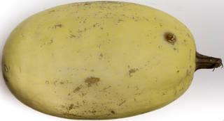 vegetables_0057 texture