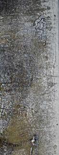 Texture of /grunge/dirty-grunge/dirty-grunge_0023_06