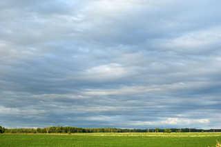 Plains landscapes 0006