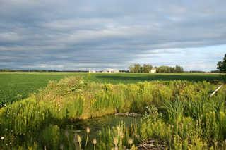 Plains landscapes 0014