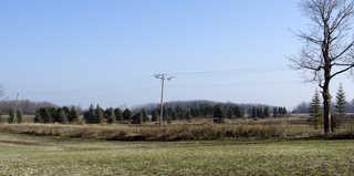 Plains landscapes 0016
