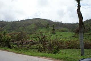 Rolling hill landscapes 0004