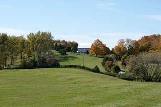 Rolling hill landscapes 0005