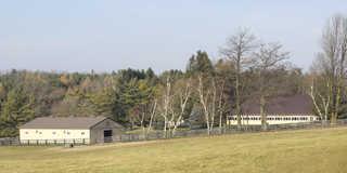 Rural landscapes 0007