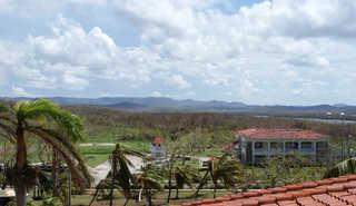 Rural landscapes 0013