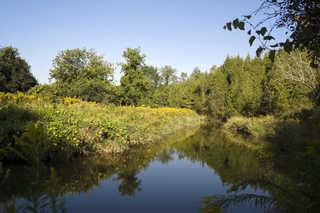 Water landscapes 0006