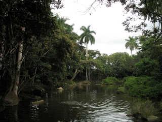 Water landscapes 0030