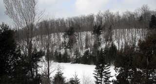 Winter landscapes 0001