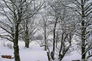 Winter landscapes 0006